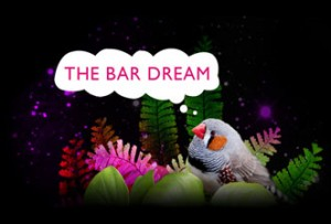 bar_dream_carlton